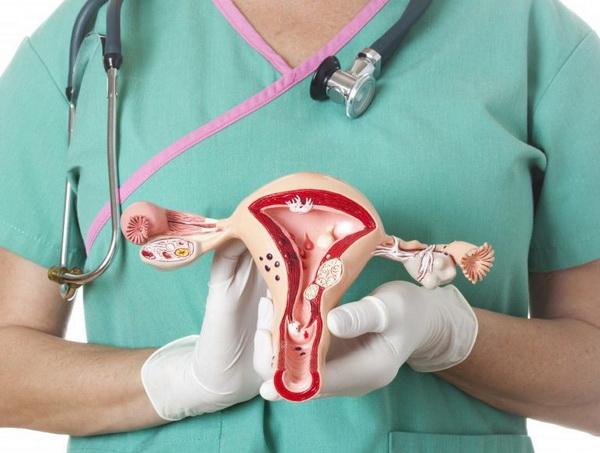 лечение миомы боровой маткой